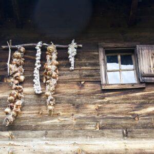 Împletitură de usturoi