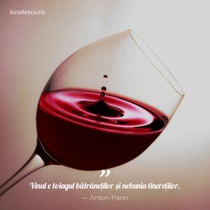 Anton Pann despre vin
