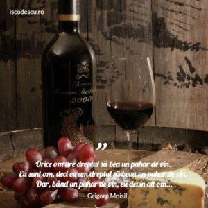 Grigore Moisil despre vin