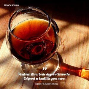 Tudor Mușatescu despre vin