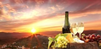 Vinul nou